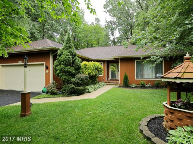 14715 Wisteria Drive, Swan Point, MD 20645 (#CH10066819) :: Pearson Smith Realty