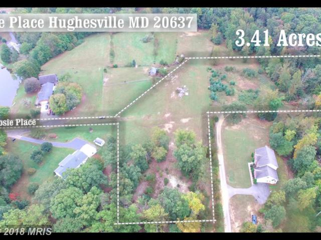 Josie Place, Hughesville, MD 20637 (#CH10082126) :: Pearson Smith Realty