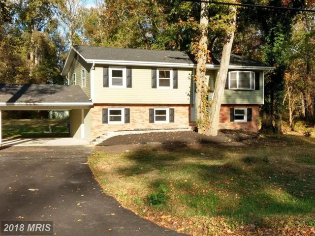 7336 Mary Drive, Port Tobacco, MD 20677 (#CH10099451) :: Pearson Smith Realty
