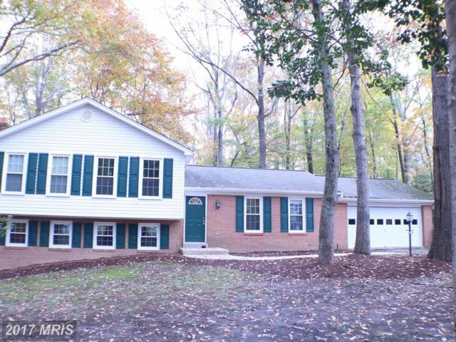 13115 East Circle, Bryantown, MD 20617 (#CH10101024) :: Pearson Smith Realty