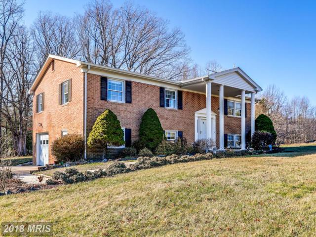 6445 Olivers Shop Road, Bryantown, MD 20617 (#CH10163088) :: Wilson Realty Group