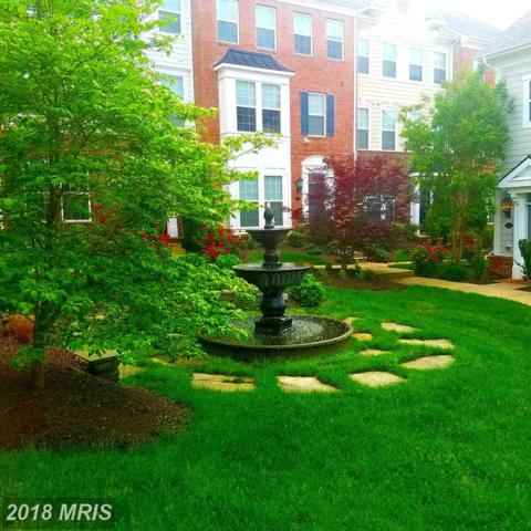 13 Steeplechase Drive, La Plata, MD 20646 (#CH10260544) :: Circadian Realty Group