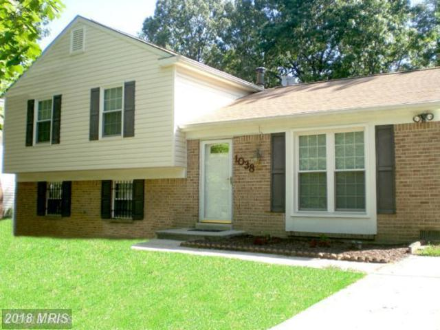 1038 Bannister Circle, Waldorf, MD 20602 (#CH9895159) :: Pearson Smith Realty