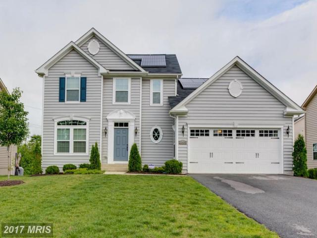 3508 Linden Grove Drive, Waldorf, MD 20603 (#CH9965558) :: LoCoMusings
