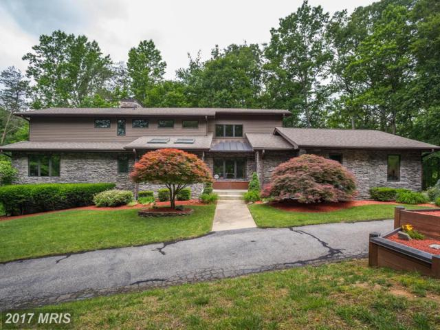 6010 Stanley Run Place, Hughesville, MD 20637 (#CH9966144) :: Pearson Smith Realty