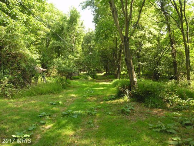 242 Cherry Lane, Bluemont, VA 20135 (#CL10027082) :: Pearson Smith Realty