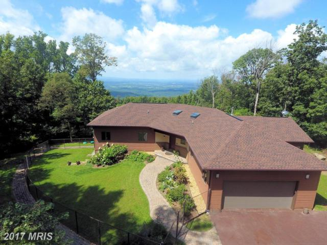 19417 Blueridge Mountain Road, Bluemont, VA 20135 (#CL10040362) :: Pearson Smith Realty