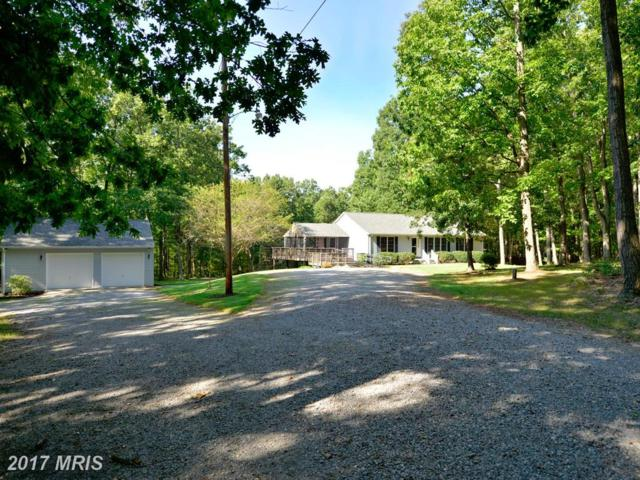 2107 Harry Byrd Highway, Bluemont, VA 20135 (#CL10055026) :: LoCoMusings