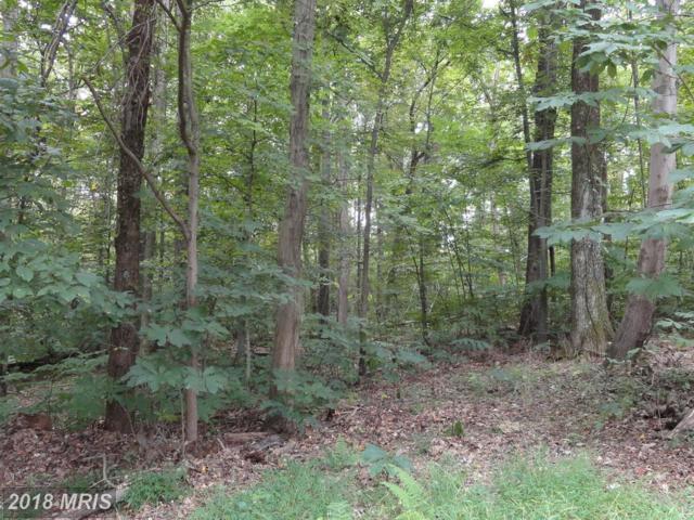 Hackberry, Bluemont, VA 20135 (#CL10055072) :: Keller Williams Pat Hiban Real Estate Group