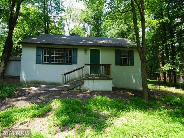92 Poplar Lane, Bluemont, VA 20135 (#CL10315917) :: Keller Williams Pat Hiban Real Estate Group