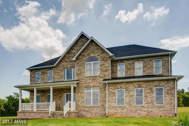 165 Pastoral Lane, Berryville, VA 22611 (#CL9954423) :: LoCoMusings