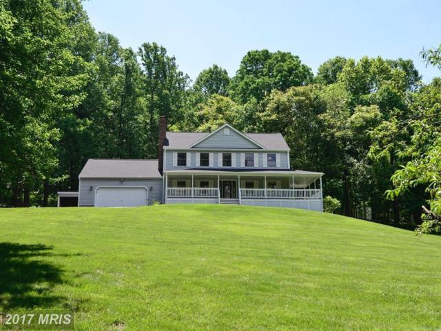 287 Barker Lane, Bluemont, VA 20135 (#CL9972955) :: Pearson Smith Realty