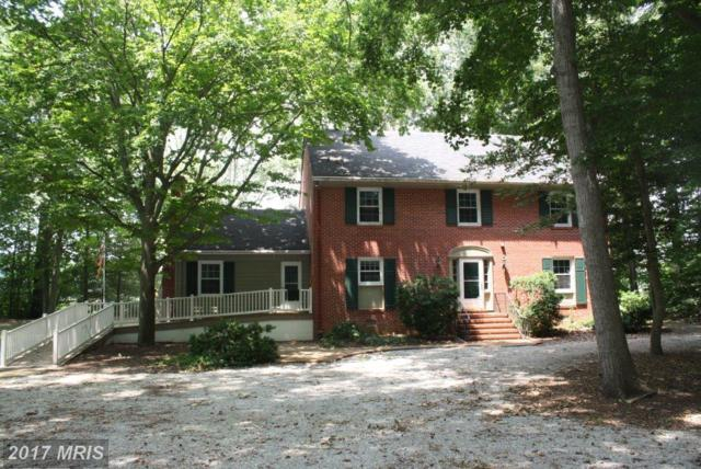 120 Sunset Drive, Denton, MD 21629 (#CM10011314) :: Pearson Smith Realty