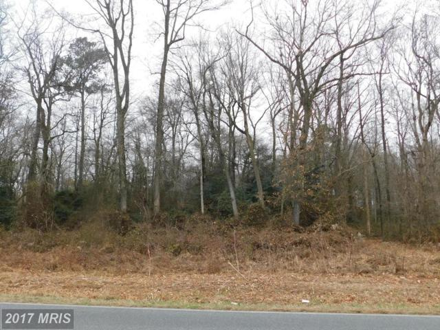 Payne Road, Preston, MD 21655 (MLS #CM10020060) :: RE/MAX Coast and Country