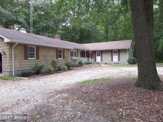 22581 Marsh Creek Road, Preston, MD 21655 (#CM10067210) :: The Gus Anthony Team
