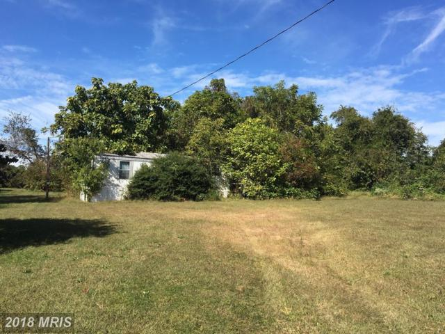 10290 Log Cabin Road, Denton, MD 21629 (#CM10077271) :: Pearson Smith Realty