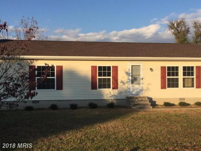 22970 Westview Drive, Preston, MD 21655 (#CM10109747) :: Pearson Smith Realty