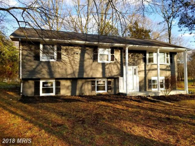 18241 Henderson Road, Marydel, MD 21649 (MLS #CM10186498) :: Explore Realty Group