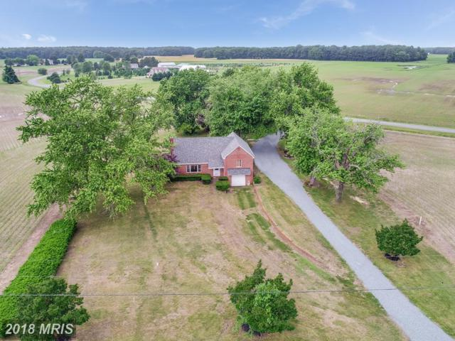 24425 Willow Pond Road, Denton, MD 21629 (#CM10250027) :: AJ Team Realty
