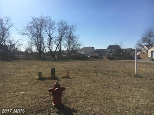 Mallard Drive, Greensboro, MD 21639 (#CM9852731) :: Pearson Smith Realty