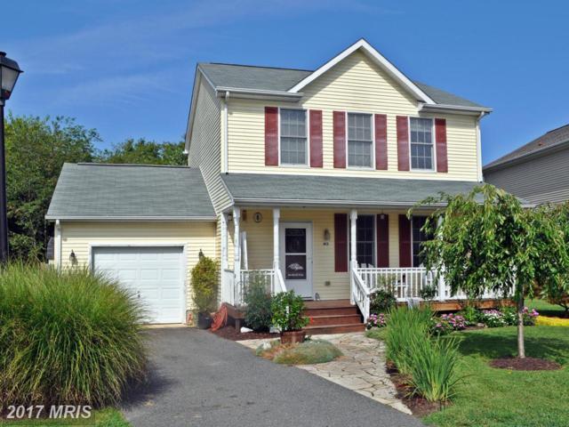 413 Mallard Drive, Greensboro, MD 21639 (#CM9905221) :: Pearson Smith Realty