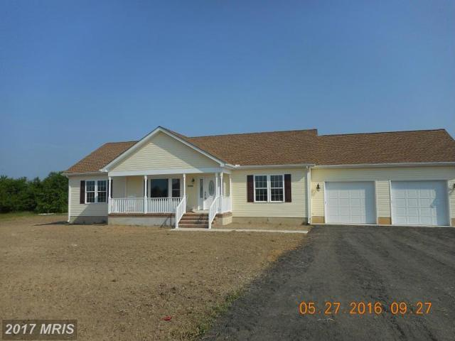Magnolia Hill Road, Ridgely, MD 21660 (#CM9913941) :: The Gus Anthony Team