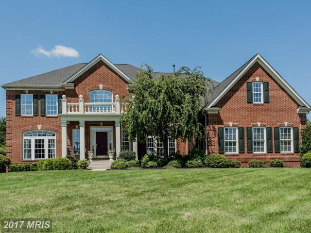 1692 Sun Berry Court, Finksburg, MD 21048 (#CR10009388) :: Pearson Smith Realty