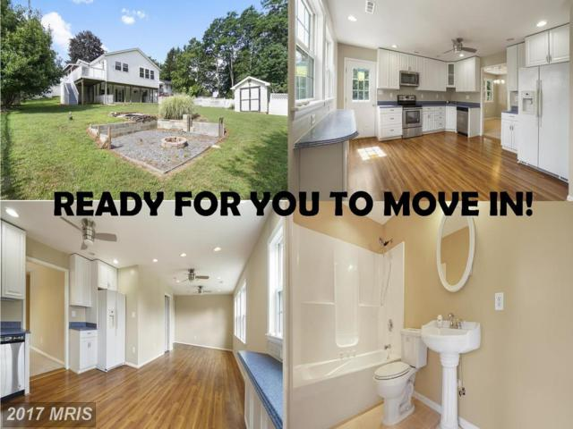 5145 Bartholow Road, Sykesville, MD 21784 (#CR10016069) :: LoCoMusings