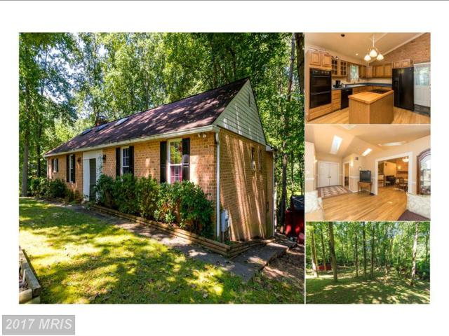 6695 Sunset Drive, Sykesville, MD 21784 (#CR10028597) :: Pearson Smith Realty