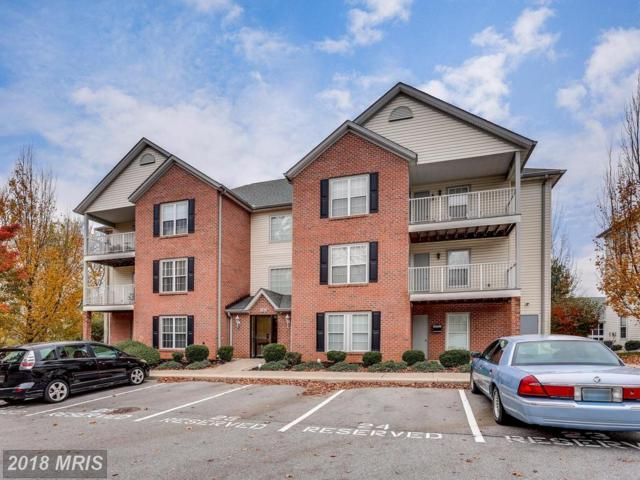 28 Bella Vita Court 1B, Westminster, MD 21157 (#CR10101152) :: Pearson Smith Realty