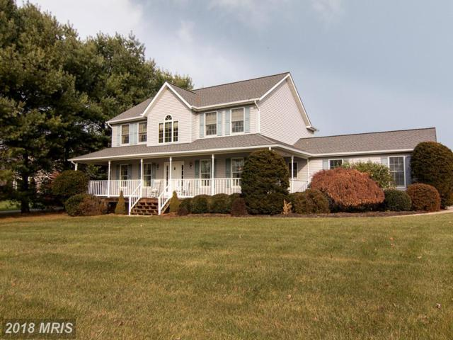 2050 Conan Doyle Way, Sykesville, MD 21784 (#CR10103325) :: The Gus Anthony Team