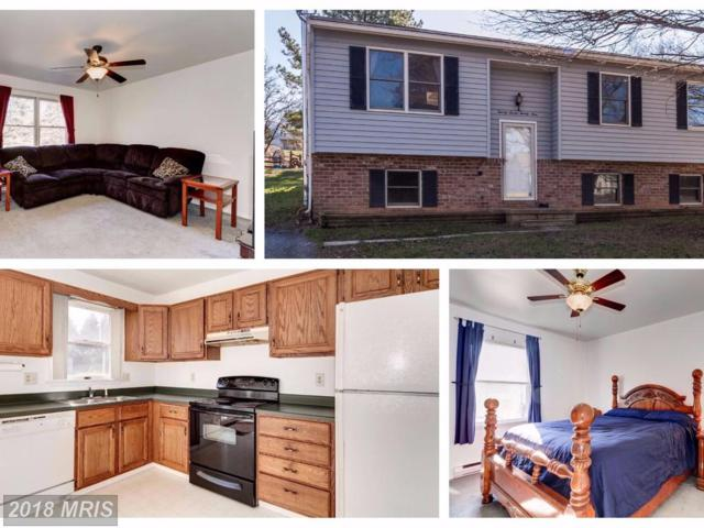 2729 Fridinger Mill Road, Manchester, MD 21102 (#CR10106608) :: The Gus Anthony Team
