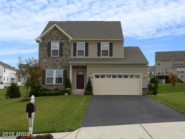 2013 Four Vines Court, Mount Airy, MD 21771 (#CR10112611) :: Pearson Smith Realty
