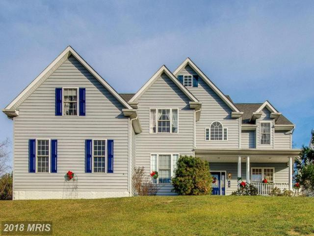 49 Fitzhugh Avenue, Westminster, MD 21157 (#CR10113835) :: Pearson Smith Realty