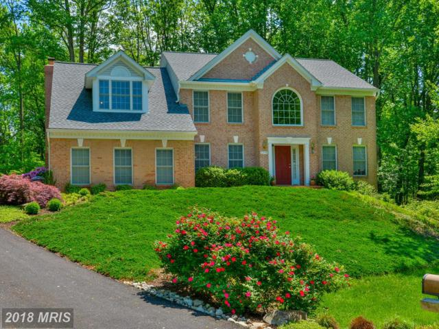 2258 Fawn Haven Court E, Eldersburg, MD 21784 (#CR10218626) :: Wes Peters Group