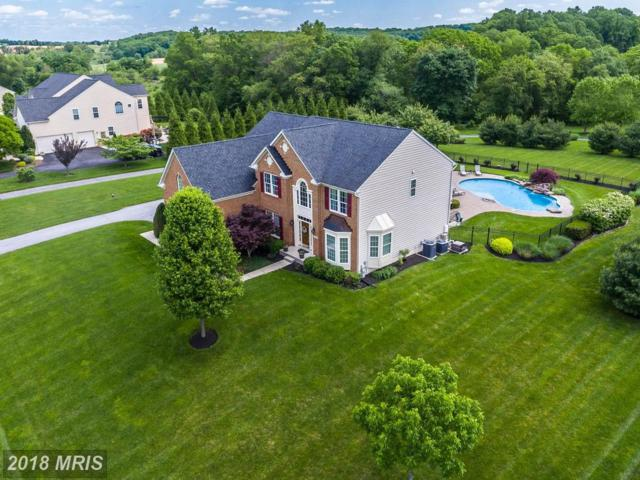 598 Corsair Court, Sykesville, MD 21784 (#CR10239413) :: Wes Peters Group