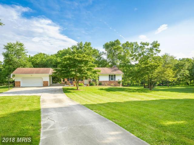 103 Estelle Court, Sykesville, MD 21784 (#CR10301591) :: Charis Realty Group
