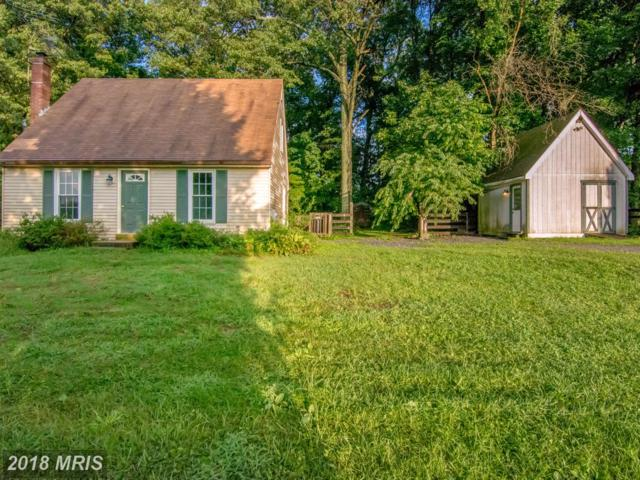 2613 Braddock Road, Mount Airy, MD 21771 (#CR10319926) :: The Maryland Group of Long & Foster