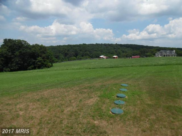 Sterling Ridge Drive, Westminster, MD 21157 (#CR9912351) :: LoCoMusings