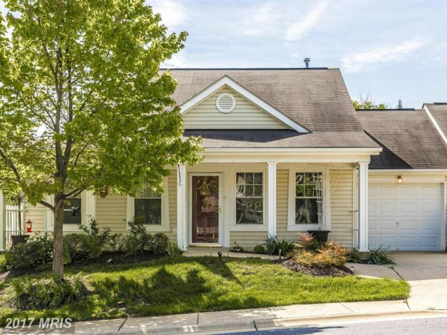 1101 Jousting Way, Mount Airy, MD 21771 (#CR9938145) :: LoCoMusings