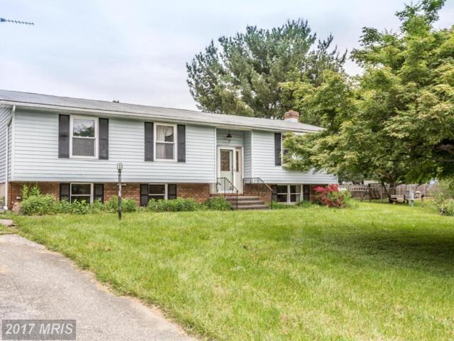 2111 Sterling Court, Hampstead, MD 21074 (#CR9957542) :: LoCoMusings