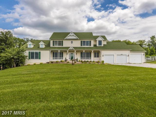 6250 Richie Drive, Mount Airy, MD 21771 (#CR9980933) :: Pearson Smith Realty