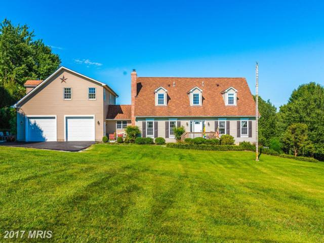 2480 Flag Marsh Road, Mount Airy, MD 21771 (#CR9987591) :: Ultimate Selling Team