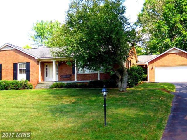 1096 Oaklawn Drive, Culpeper, VA 22701 (#CU10009068) :: Pearson Smith Realty