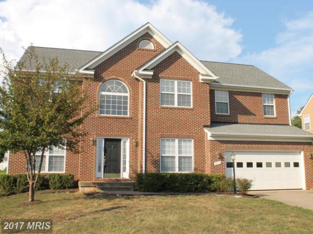 1033 Virginia Avenue, Culpeper, VA 22701 (#CU10015124) :: LoCoMusings