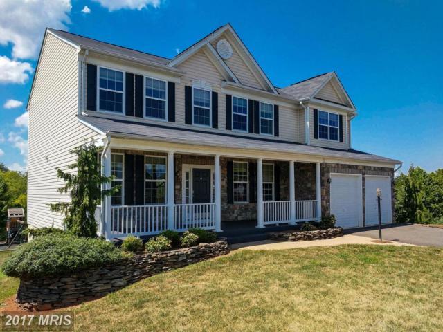 13209 Kerr Place, Culpeper, VA 22701 (#CU10018699) :: Pearson Smith Realty