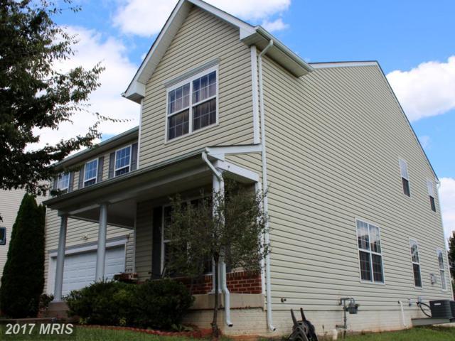 1737 Finley Drive, Culpeper, VA 22701 (#CU10051091) :: Pearson Smith Realty