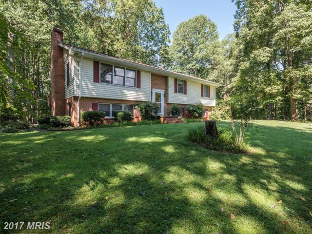 3388 Holly Springs Road, Amissville, VA 20106 (#CU10053109) :: Pearson Smith Realty