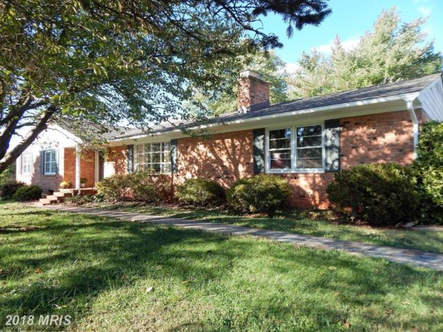 334 Willow Lawn Drive, Culpeper, VA 22701 (#CU10090385) :: Pearson Smith Realty