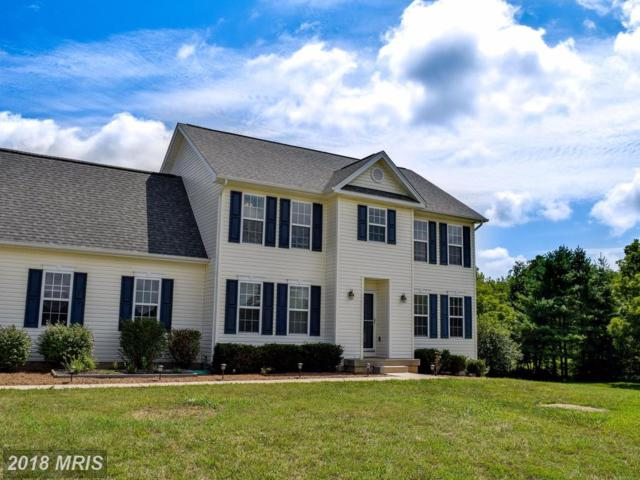 16253 Glenhollow Court, Culpeper, VA 22701 (#CU10092719) :: AJ Team Realty